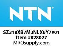 NTN SZ318XB7M3NLX6Y7#01 Plummer Blocks