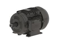 WEG .7536EP3WAL80 .75kW 3600 3 60//50 460//220-2 IEC-AL