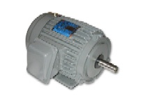 Teco-Westinghouse CP2504/8 AECA 2 SPEED 1 WINDING VARIABLE TORQUE HP: 250 / 62.5 RPM: 1800/900 FRAME: 449T
