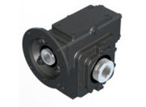 WINSMITH E43MDSS53390H0 E43MDSS 100 DLR 180TC 2.44 WORM GEAR REDUCER