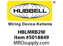 HBL_WDK HBLMRB2W SINGLEPOLE 400A MALE BUS 2 HOLE WH
