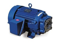 850846.00 40Hp 3600Rpm 324Tyz Tefc 230/460Vac 3Ph 60Hz Cont 40C 1.15 Sf 2 & 4 Bolt Sae C