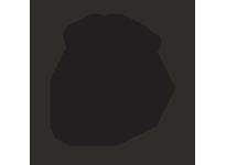 Harwal VL525 VL-525 NBR V-Ring
