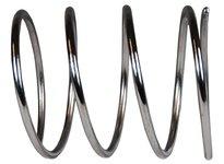 """DIXON BS-02-R100-200 1-2"""" Strainer Spring"""
