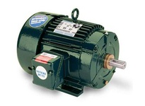 811558.00 25Hp 3560Rpm 284 Tefc /V 3Ph 60Hz Cont Not 40C 1.15Sf Rigid Ieee 841.284Tshfna19009Aa