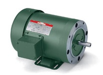 131504.00 3Hp 1770Rpm 182 Tefc /V 3Ph 60Hz Cont Automatic 40C 1.15Sf Rigid C Wattsaver C182T17Fk14E