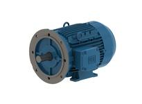 WEG 00536ET3YAL132SFF 5kW 3600 3 60//50 460 IEC-AL