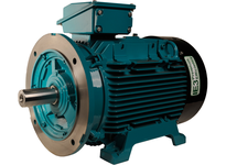 Brook Crompton BC4M004-4C 4HP 1800RPM 230/460V Cast Iron IEC 100L C Face