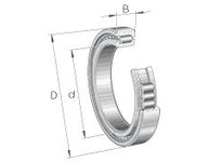 INA SL181884E Cylindrical roller bearing-full com