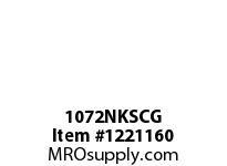 WireGuard 1072NKSCG 10x10x72 NEMA TYPE-1 GUTTER