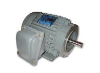 Teco-Westinghouse NV0404C AEVANE MAX-SE HP: 40 RPM: 1800 FRAME: 324TC