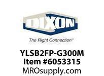YLSB2FP-G300M