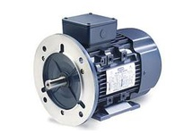 193343.60 7 1/2Hp-5.5Kw 1750Rpm Df132Sd Tefc 2 30/460V 3Ph 60Hz Cont 40C 1.15Sf B5