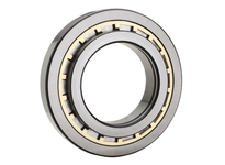 NTN NH421AF1C4NA Large Size Cylindrical Roller