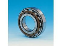SKF-Bearing N 316 ECM/C3