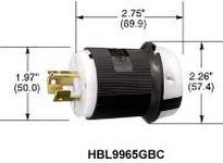 HBL-WDK HBL9965GCB LKG PLUG 2P3W 20A 250V B/W