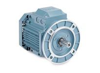 BALDOR EMVM3545D .75KW3450RPM3PH60HZD80D3420MT EFCB 230/460 :