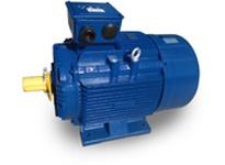 Teco-Westinghouse MP0504 AESV3W MAX-IE3 METRIC HP: 50 RPM: 1800 FRAME: 225S