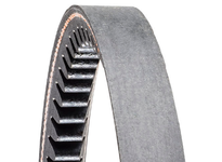 Carlisle DX71MS Gold Ribbon Cog-Belt