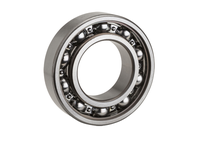 NTN 6206F600 Extra Small/Small Ball Bearing