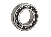 NTN 6206F600 Extra Small/Small Ball Bearing