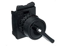 WEG CSW-CA2F45 2Pos. Lever Fixed 45 deg Pushbuttons
