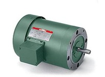 131501.00 5Hp 1760Rpm 184 Tefc /V 3Ph 60Hz Cont Automatic 40C 1.15Sf Round Watt Saver.C184T17Fc29E