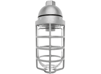 RAB VP200DG/F22 VAPORPROOF 22W CFL 120V PENDANT 1/2 WITH GLASS GLOBE