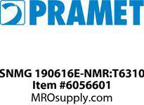 SNMG 190616E-NMR:T6310