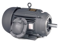 CEM7067T-I-5 40HP, 3540RPM, 3PH, 60HZ, 324TSC, 1252M, XPFC