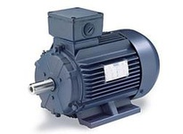 193304.60 4Hp-3Kw 1750Rpm Df100L Tefc 230/ 460V 3Ph 60Hz Cont 40C 1.15Sf B3.C1 00T17Fz42 .