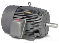 Baldor M4338T 30HP 870RPM 3PH 60HZ 364T 1442M TEFC F1