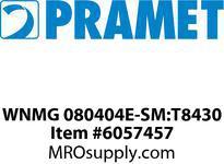 WNMG 080404E-SM:T8430
