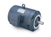 Leeson G140689.00 G140689.00 15Hp 3480Rpm 215Tc Odp 230/460V 3Ph 60Hz Cont 40C 1.15Sf C-Face C215T34Dc2 .Gen Purpo