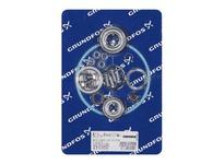 Grundfos 435006 KIT BEARING 6201/6203.2Z.C3.SYN