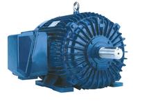 NAE SD9100 HP: 100 FRAME: 445T RPM: 900
