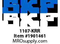 SKFSEAL 1107-KRR AG BRGS