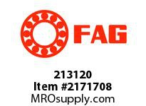 FAG 213120 DOUBLE ROW SPHERICAL ROLLER BEARING