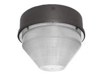 RAB VANGH100QT VAN GARAGE 15 ROUND 100W MH HPF QT + LAMP BRONZE