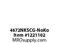 WireGuard 4672NKSCG-NoKo 4X6X72 NEMA TYPE-1 GUTTER
