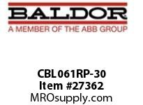 BALDOR CBL061RP-30 RAW POWER CABLE 30 AMP 20 FT