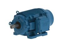 WEG 10012ET3PCT444T-W22 100HP 1200 3 60 200V Cooling-TWR