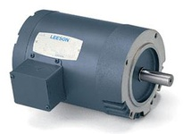 100486.00 1/2Hp 1725Rpm 48 Tenv 208-230/460V 3Ph 60Hz Cont Not 40C 1.0Sf Round  General Purpose C4T17Nc11D