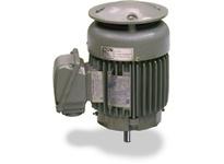 Teco-Westinghouse VSP7004 AMRCED MAX-VSP VERTICAL SOLID SHAFT WPI HP: 700 RPM: 1800 FRAME: 5810VP
