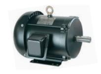 NAE F215T10S4C HP: 10 FRAME: 215T RPM: 1800