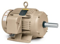 BALDOR EGDM2513T 15HP, 1765RPM, 3PH, 60HZ, 254TZ, 3938M, OPSB, F, 208-230/460