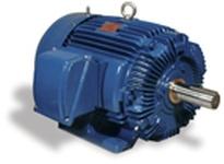 Teco-Westinghouse HH1256 AEHH MAX-E2/841 LITE HP: 125 RPM: 1200 FRAME: 445T