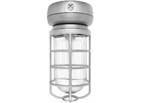 RAB VX2F32 VP CFL CEILING 32W QT 1/2 WITH GLASS GLOBE CAST GD