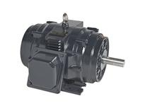 Leeson LM32781 15Hp 1800Rpm 254Tc.Odp - Cast Iron.230/460V 3Ph 60Hz Cont 40C Rigid-C
