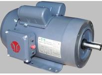 Techtop RD1-RS-TF-184T-4-B-B-5 5HP 1800RPM 208-230V 184T TEFC FARM